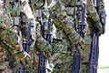 JGSDF Type89 rifle 20120610-02.JPG