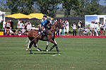 Jaeger-LeCoultre Polo Masters 2013 - 31082013 - Match Legacy vs Jaeger-LeCoultre Veytay for the third place 42.jpg