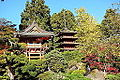 Japanese Tea Garden (San Francisco) - DSC00169.JPG