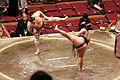 Thumbnail for version as of 01:03, 14 November 2007