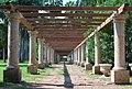 Jardín Botánico, Los Mochis, Sinaloa (33307963596).jpg