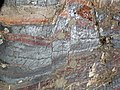 Jaspilite banded iron formation (Soudan Iron-Formation, Neoarchean, ~2.69 Ga; Stuntz Bay Road outcrop, Soudan Underground State Park, Soudan, Minnesota, USA) 52 (19219608862).jpg