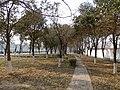 Jiyuan - park at Manghe N St, pic03.jpg