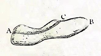 """Paramecium - """"Slipper animalcule,"""" illustrated by Louis Joblot, 1718"""