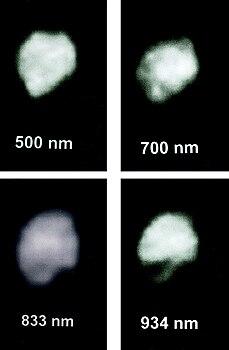 Asteroids Chiron Ceres Pallas Juno and Vesta