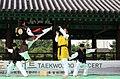 KOCIS Korea Taekwondo Namsan 29 (7628117516).jpg