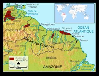 Carib language highly endangered South American language, spoken by the Kalina people (Caribs)