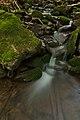 Kamenistý potok, Národná prírodná rezervácia Stužica, Národný park Poloniny (03).jpg
