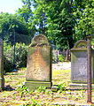 Kamienna Góra, cmentarz żydowskiPICT6700.JPG