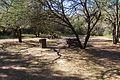 Karoo National Park 2014 42.jpg