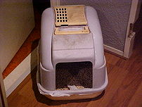 An enclosed litter box