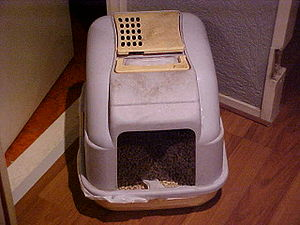 Litter box - An enclosed litter box