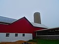 Kick A Boo Farms - panoramio (4).jpg