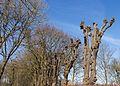 Klokkenstoel Dijken in De Fryske Marren 001.jpg