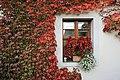 Kloster Altzella 2H1A0401WI.jpg