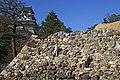 Kochi Castle06s3872.jpg