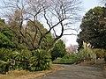 Koishikawa Botanical Gardens, Tokyo - entryway.jpg
