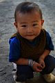 Ladakh (45504701).jpg