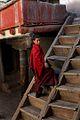 Ladakh (92800933).jpg