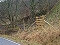 Ladder stile over deer fence for new forestry at Easter Eurach - geograph.org.uk - 97644.jpg