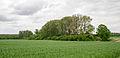 Lage - 2015-05-17 - LIP-009 Hardisser Moor (9).jpg