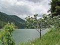 Lago d'Alleghe - panoramio.jpg
