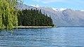 Lake Esplanade, Queenstown (482915) (9481909997).jpg