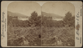 Lake George - Caldwell, from Robert N. Dennis collection of stereoscopic views.png