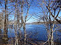 Lake Miccosukee along US 90 walkway 2.JPG