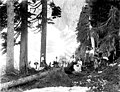 Lake Serene with campers at north end, ca 1911 (PICKETT 42).jpeg