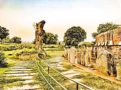 Landscape near Mahachaitya.jpg