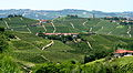 Landscape of vineyards in Piemonte, Italy.jpg