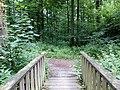Landschaftsschutzgebiet Waldgebiete bei Dielingdorf und Handarpe LSG OS 00025 Datei 10.jpg