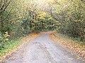 Lane between Llangynog and Llanybri - geograph.org.uk - 1040431.jpg