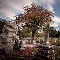 Laurel Hill Cemetery.jpg