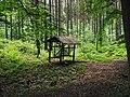Leśny paśnik - panoramio.jpg