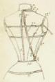 Le Journal de Françoise, Vo 1 No 4 (1902-05-10) (illustration page 14).png