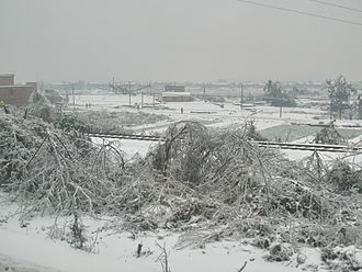 2008 Chinese winter storms - Snowstorm in Leiyang