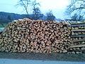 Les osnova za Biomaso.jpg