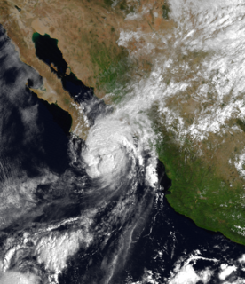 Tropical Storm Lidia (1981) Pacific tropical storm in 1981