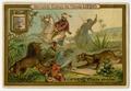 Liebig Company Trading Card Ad 2014.003.001 front.tif