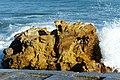 Light, rock, water and texture (7843962900).jpg