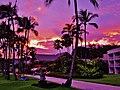 Lihue, Kauai, Hawaii - panoramio (9).jpg