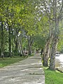 Limbang Town - panoramio (1).jpg