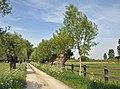Lissewege Oude Pastoriestraat R02.jpg