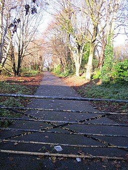 Liverpool Loop Line at Well Lane, Childwall (2)