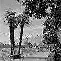 Locarno Boulevard met palmen en enkele bezoekers, de Alpen op de achtergrond, Bestanddeelnr 254-4778.jpg