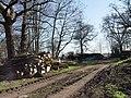Lumberyard, nr Manswood - geograph.org.uk - 327791.jpg