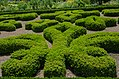 Luray Garden Maze (7578072510).jpg