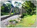 MORRETES (ponte ferroviária Morretes-Antonina), Paraná, Brasil by Nivaldo Cit Filho - panoramio (2).jpg